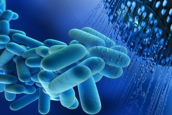 Колаж показващ бактерията легионела в битовата гореща вода